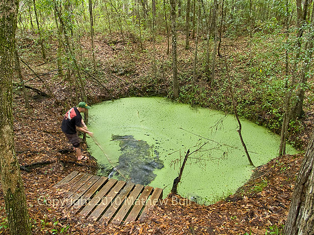 Photo of Leon Sinks Geological Area - Tallahassee, FL, United States. This  is